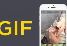 How to Create Animated Images: The Age of GIFs