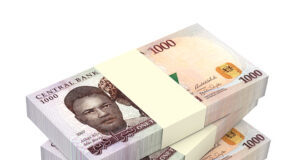 alt-DBN-loans-for-small-businesses