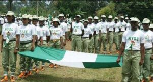 Business Ideas For Youth Corpers