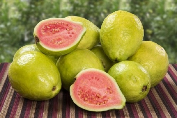 Health Benefits Of Guava And Its Properties