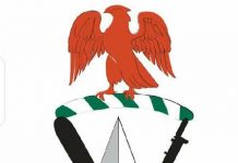 alt-Nigerian-Customs-Service-Salary-Structure-and-Ranks